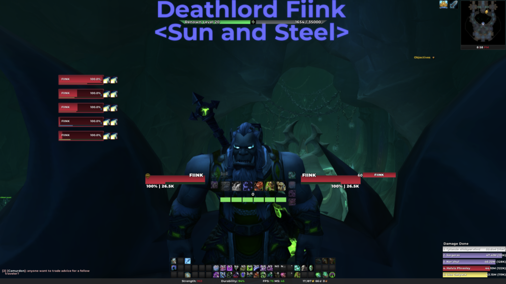 DPS/Tank Party